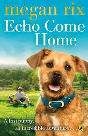 Echo Come Home - cover