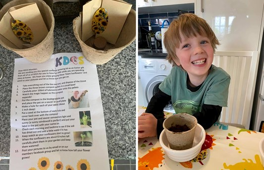 Side by side images of a piece of paper with instructions for growing sunflowers and a photo of a young boy in front of a plant pot